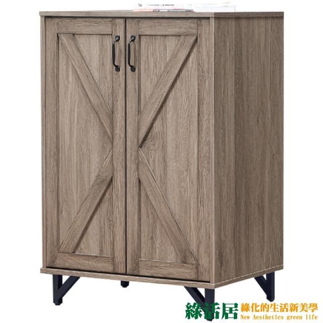 【綠活居】馬布斯  時尚2.6尺二門鞋櫃/收納櫃