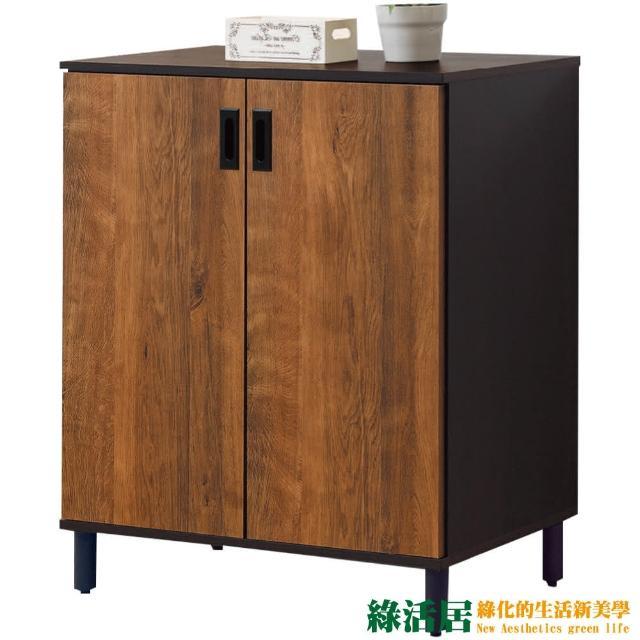 【綠活居】蘭迪  時尚2.7尺二門鞋櫃/玄關櫃(二色可選)