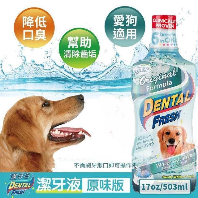 【美國潔牙白Dental Fresh】一般版潔牙液 503ml(2入組)
