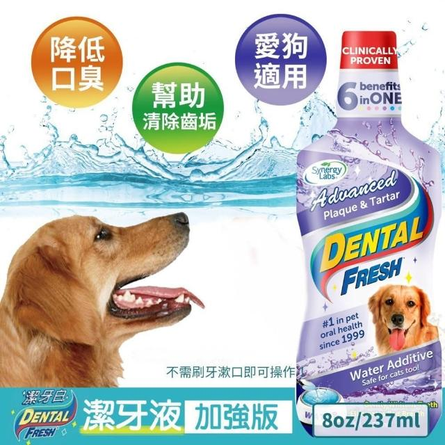 【美國潔牙白Dental Fresh】加強版潔牙液 237ml(2入組)